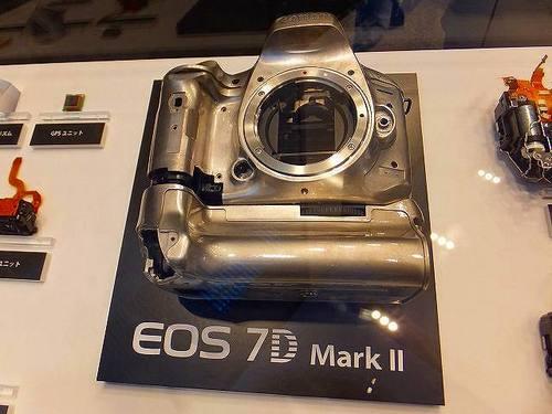 DSCF3165.jpg