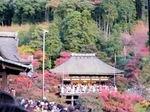 kiyomizu6.jpg